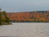 Fall colours 4