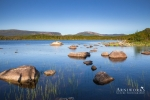 Gros Morne, Berry Hill Pond