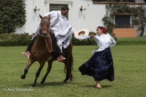 Marinera Dance with Peruvian Paso Horse