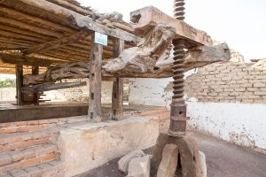 450-year old wine press