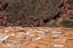 Salt ponds 5