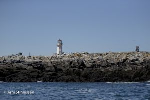 Lighthouse on Machias Seal Island